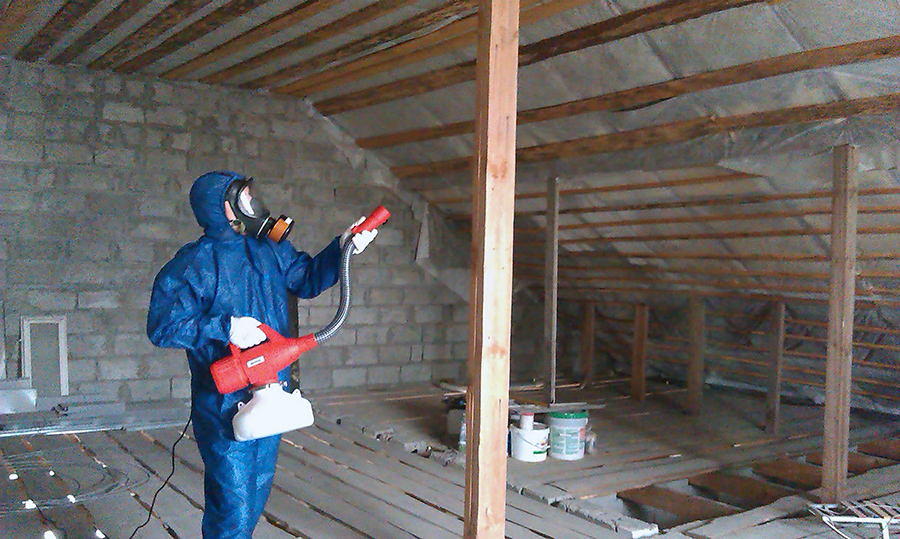 Защитные мероприятия против вредителей древесины